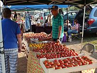 Tomatoes at Moose Lake Area Farmers Market